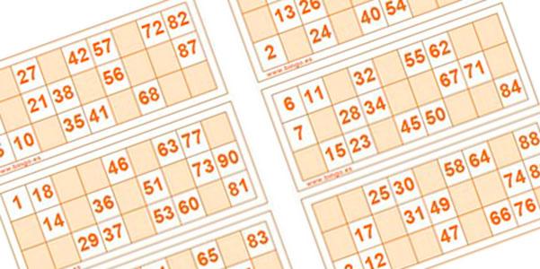 Catalogo De Bingos Familiares Y Loterias